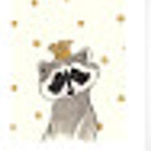 Raccoon King
