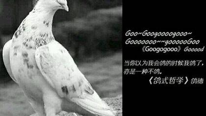 【賽車2】4月23日全網公測! (來拿開羅周邊)|Pixel Wei Shu Wu - Shu Han Legend