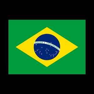 BRAZIL2019