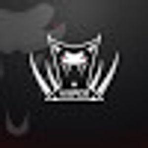 Viiper Gaming -